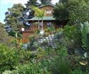 The Big Tree House, Knysna Accommodation