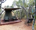 Spekboom Tented Restcamp, Addo Elephant Park Accommodation